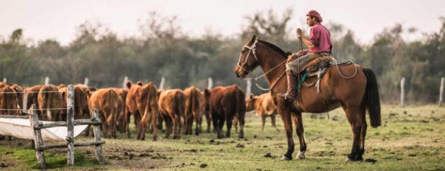 Bono de fin de año para trabajadores rurales
