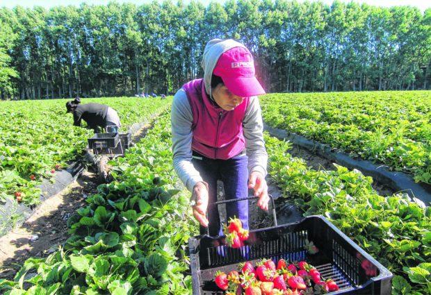 Senadores de la UCR solicitan financiamiento a tasa subsidiada para pequeñas empresas y ocupaciones independientes